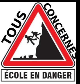 ob_6a3a9f_ob-10e5e8-ecole-en-danger